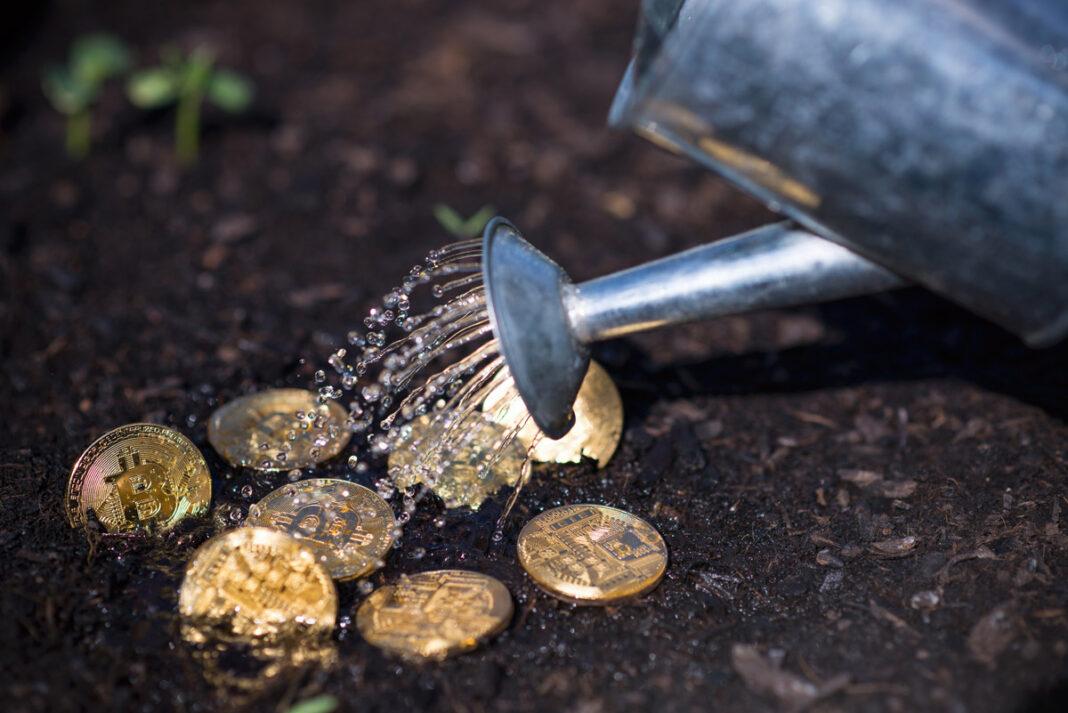 Le-Bitcoin-remonte-après-être-descendu-en-dessous-de-30-000usd